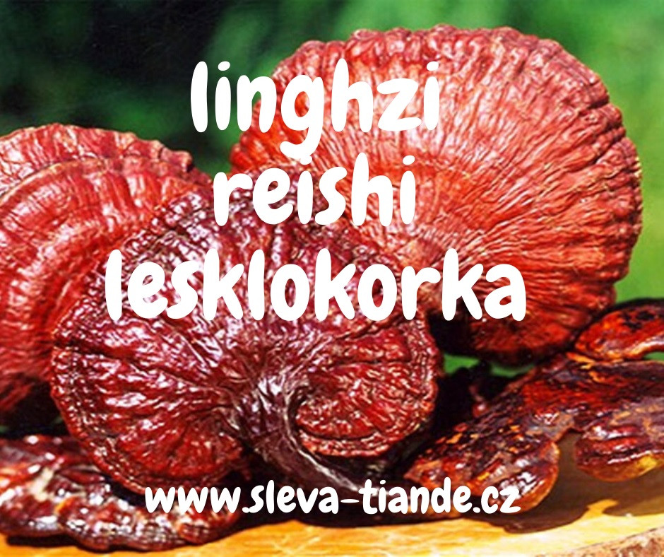 Houby LingZhi tianDe, kosmetika tianDe, sleva tianDe