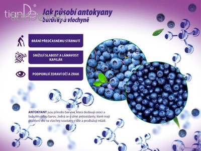 Pektinový kysel s vlochyní a borůvkou tianDe